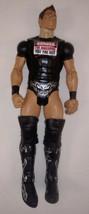 "WWE 2012 Mattel The MIZ Wrestling Action Figure 7"" - $14.84"