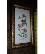 Carolyn Shores Wright Floral Hummingbird Print - Framed - $25.00