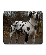Great Dane Puppy Dog Photo Computer Mousepad New - $6.59