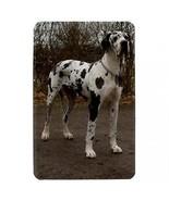 Great Dane Puppy Dog Hardshell Case for Amazon Kindle Fire - $14.07