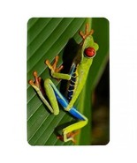 Red Eyed Green Tree Frog Hardshell Case for Amazon Kindle Fire - $14.07