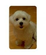 Maltese Puppy Dog Hardshell Case for Amazon Kindle Fire - $14.07