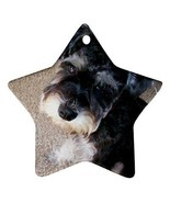 Miniature Schnauzer Puppy Dog Star Shaped Porcelain Christmas Ornament - $4.72