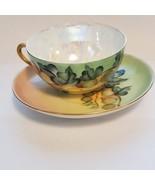 Vintage Antique CT Altwasser Porcelain Hand painted Tea cup saucer set.   - $20.00