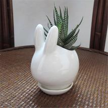 Mini Rabbit Ceramic Succulent Flower Pot Garden Porcelain Saucer Decor P... - $29.65
