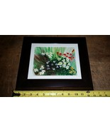 robert krainson floral watercolor print picture Framed - $74.25