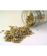 Organic FENNEL Seeds  1oz   Great Digest AID! - $2.96