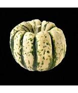 Sweet Dumpling Squash 11 Seeds Cucurbita Pepo Small Gourd Usa Heirloom N... - $9.16