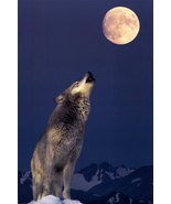 HAUNTED male WEREWOLF protection physical full moon ENERGY power energy BEAD  - $18.99