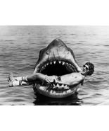 Rare Steven Spilberg Jaws 1975 White Shark Movie 8x10 Photo Print - $7.99