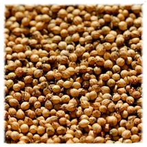 Coriander Seed 14 oz - $10.99