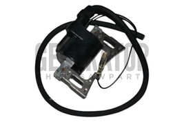 Ignition Coil Module Magneto For Robin RGX305 RGX305D RGX3500 RGX3510 Generators - $39.55