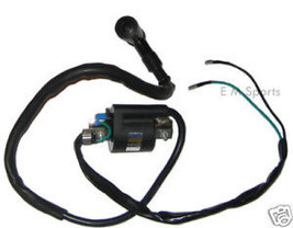 Atv Quad Engine Ignition Coil Magneto Parts 90cc BAJA Canyon Wilderness Trail - $19.75