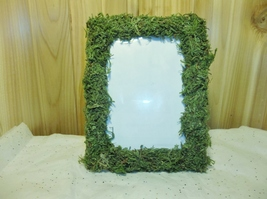 6 Moss Covered Picture Frames 5X7 Table Numbers Shabby Chic and Rustic f... - $48.01