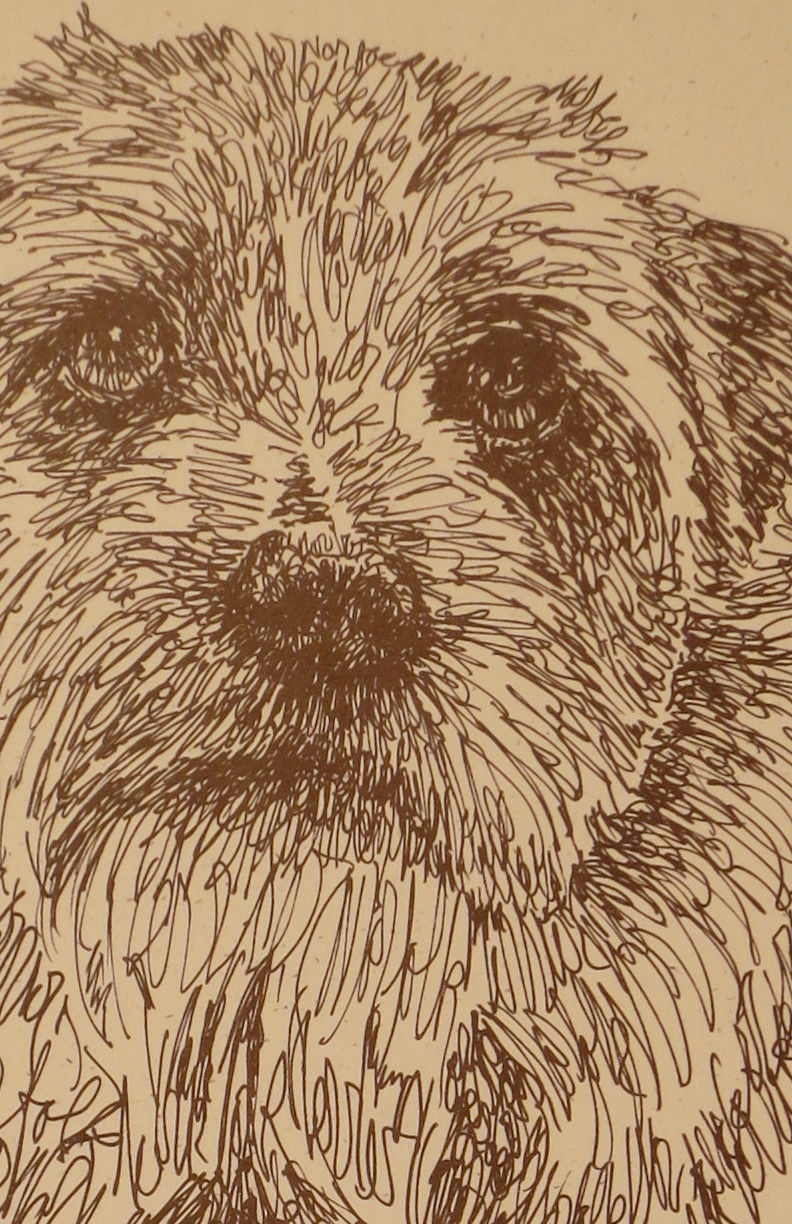 Old English Sheepdog Dog Art Lithograph #41 Kline draws your dogs name free GIFT