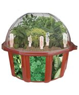 Dome Terrarium Home Growing Kit, Indoor Garden ... - £29.17 GBP