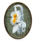 Flower52 Christmas List Brad Green Glass-Digita... - $4.00