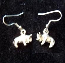 BUFFALO BISON EARRINGS-Rodeo Cowboy Western Animal Charm Jewelry - $6.97