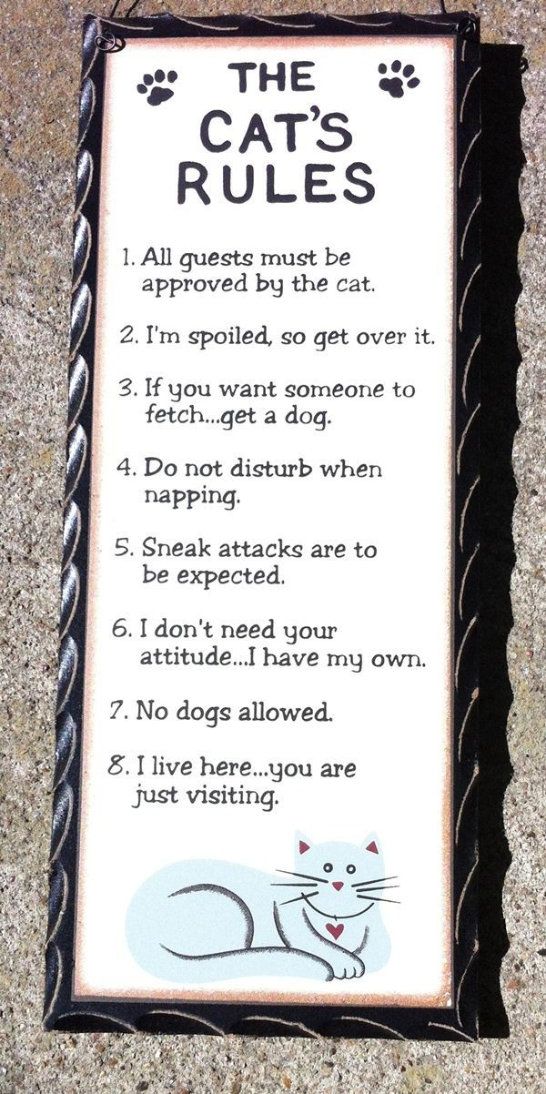 Primary image for WD479 The Cat's Rules Wood Hanging Sign