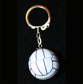 VOLLEYBALL KEYCHAIN-3d Team Fun Coach Gift Funky Novelty Jewelry