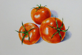 "Akimova: TOMATOES, food, still life, approx. size 14""x11"" - $15.99"