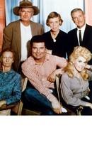 Beverly Hillbillies Buddy Ebsen Vintage 8X10 Color TV Memorabilia Photo - $4.99
