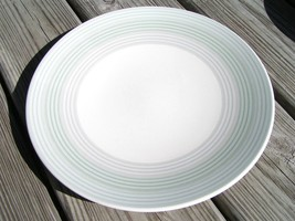 Internet Green By Mikasa Cw121 Dinner Plate Stoneware - $29.91