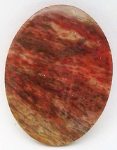 Petrified Wood Cabochon 12 - $7.90