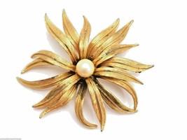 Vintage Signed Judy Lee Statement Brooch Huge Gold Flower Pearl Center - $17.79