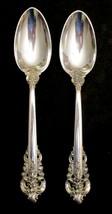 Grande Baroque 8.5 inch sterling serving spoon - $125.00