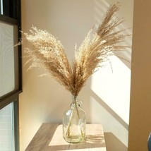 """20"""" Pampas Grass for Boho Weddings and Home Decor - $19.20+"""