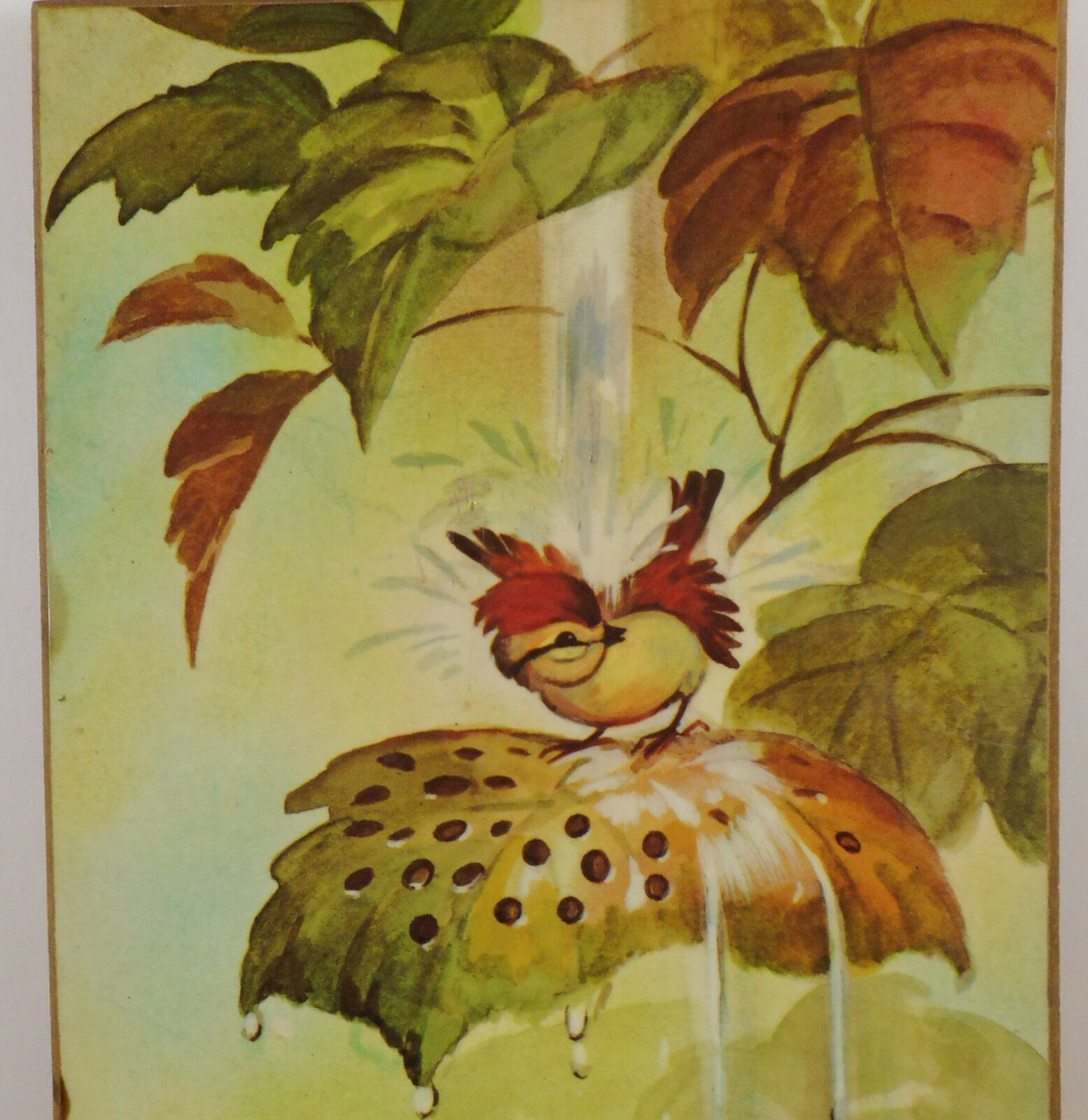 Vintage Coby Bathing Owl Print Mounted On Wood Plaque Picture Hanging Nursery image 3