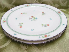 Brittany By Noritake 7195 Lot 2 Dinner Plates Flowers - $34.58