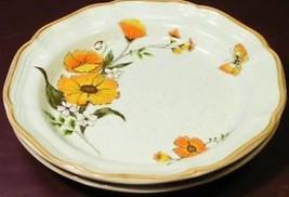 Florian By Mikasa Cm952 Boranial Lot 2 Salad Plates - $29.91