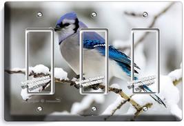 Blue Jay Bird Winter Snow Bluebird Light Triple Gfi Switch Wall Cover Room Decor - $16.17