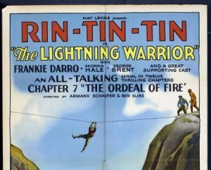 Poster of the movie the lightning warrior