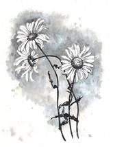 Akimova: DASIES, flower, still life, garden, black and white - $5.50