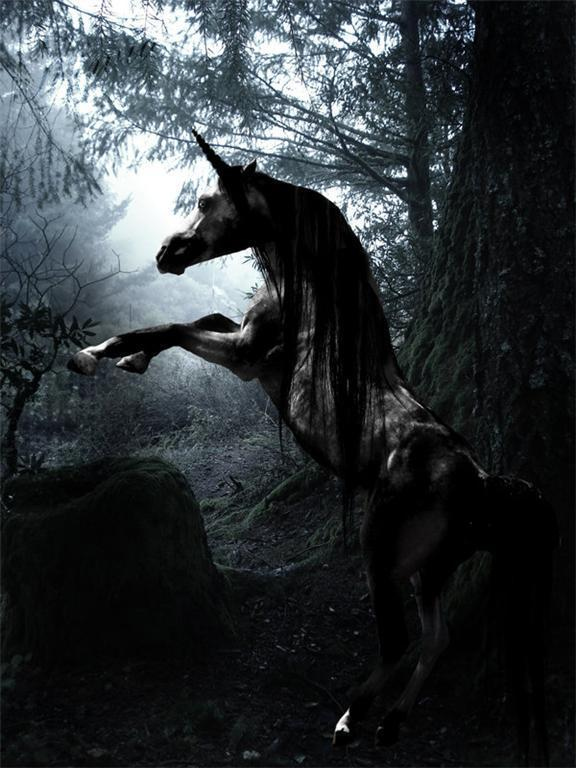 Primary image for Haunted Rare Dark Black  UNICORN MAGICK JINN POWER WISHES male dreams visions
