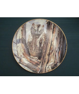 SCOPS OWL collector plate PERFECT DISGUISE Trevor Boyer OWLS Danbury Mint - $19.95