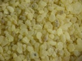 Gum Mastic ~Natural Resin Incense~ 1/2 oz - $12.00