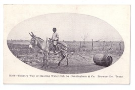 Brownsville Texas Water Carrier Hauling Country Way Mule Postcard - $18.00
