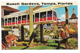 Busch Gardens Tampa Florida Skyrail Safari Parrots Cheetah Vtg Beckett P... - $4.74