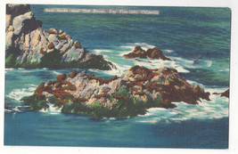 CA San Francisco Seal Rocks Near Cliff House Vtg Linen Colourpicture Pos... - $4.74