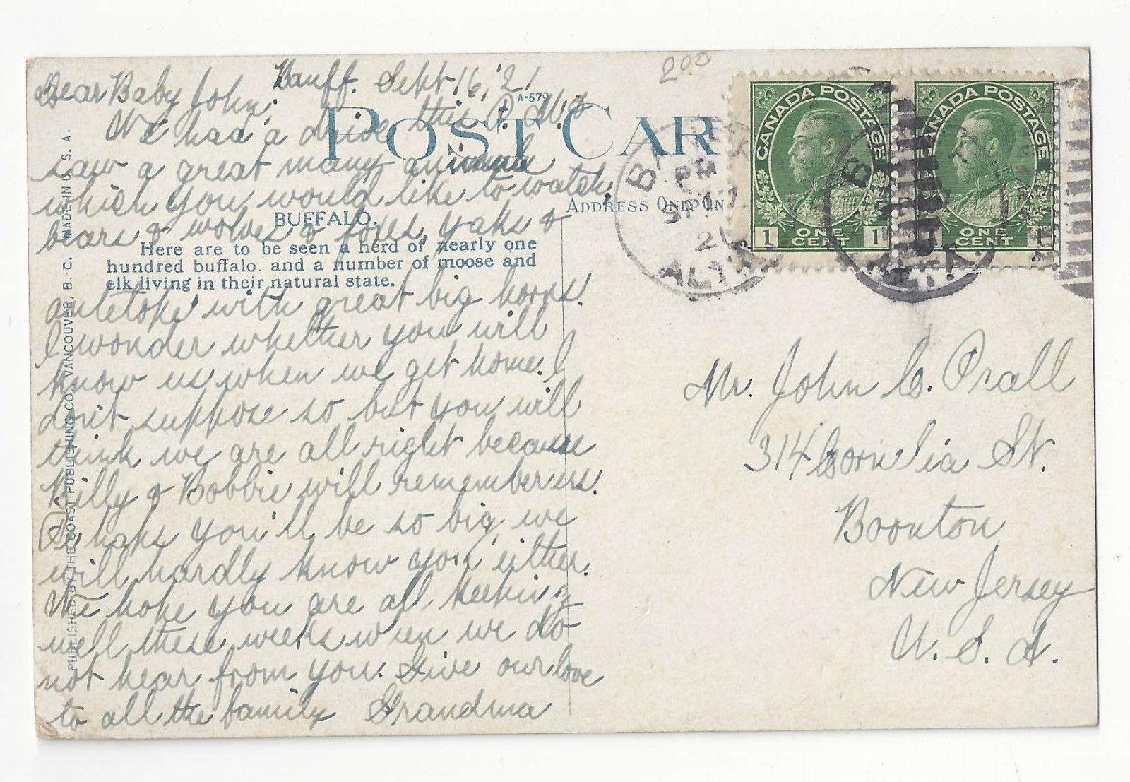 Canada Banff Rocky Mountain Park Buffalo Canadian Rockies Vtg Postcard 1921
