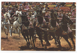 Great Adventure Jackson NJ Roman Chariot Race 1974 Vintage Postcard 4x6 - $9.44