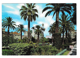 Spain Cadiz Jerez de la Frontera Augustias Square Vtg Postcard 4X6 - $6.64