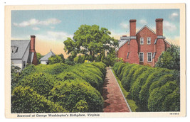 VA George Washington's Birthplace Boxwood Vtg Linen Postcard - $4.74