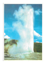 WY Yellowstone National Park Old Faithful Vtg Sanborn Souvenir Postcard 4X6 - $6.36