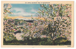 WA Apple Blossom Time in Washington Vtg C P Johnston Linen Postcard - $6.49