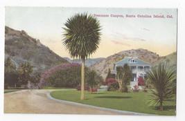CA Santa Catalina Island Descanso Canyon Vintage Postcard - $5.52